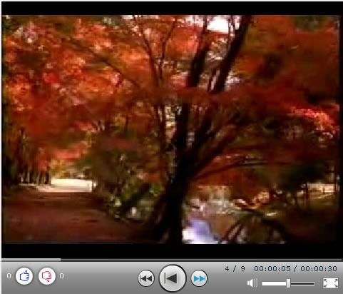 京都.jpg